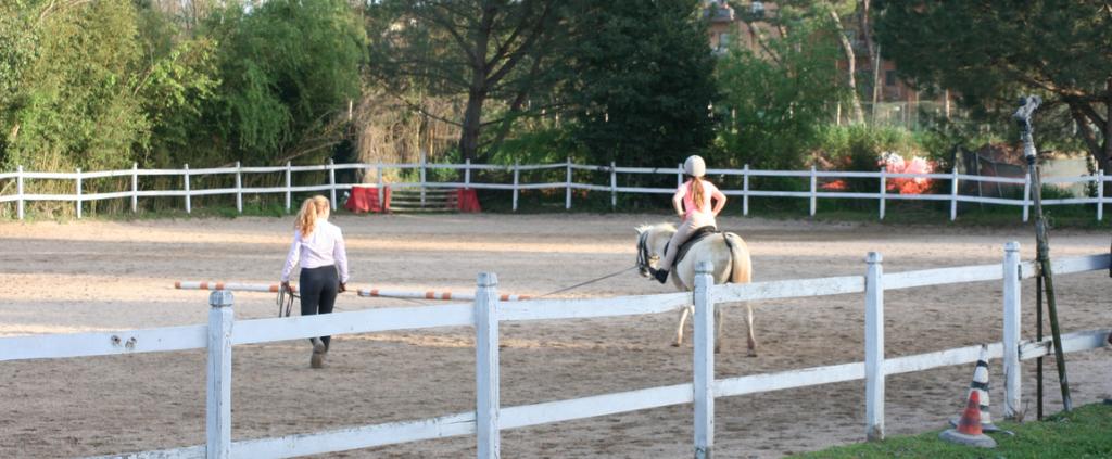 scuola-pony-large